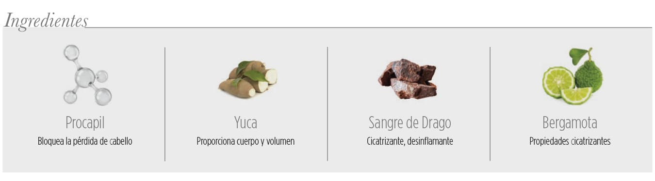 Ingredientes Champu